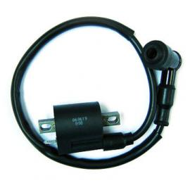 Ignition coil and parts