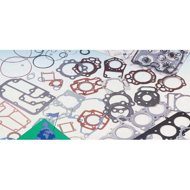 Gasket kit cylinder Honda MTX80R, MBX80 Malossi tuning...