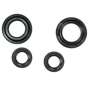 Engine oil seal kit Aprilia RS4 125