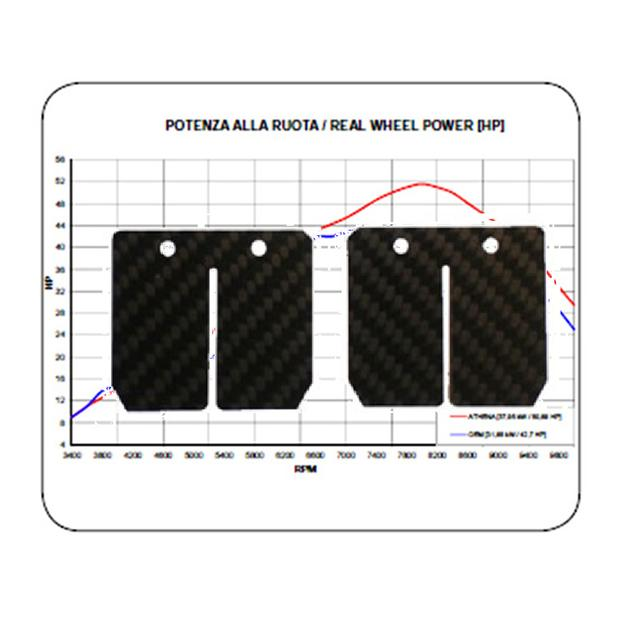 Membrane Carbon Honda MTX 80 R Stage 2 Racing