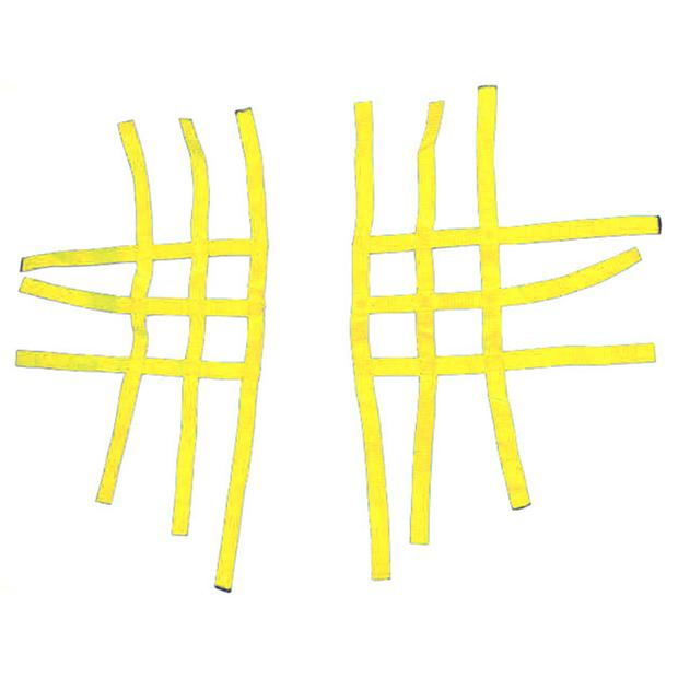 net for Nerf Bars R1 yellow